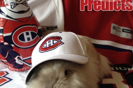 Puck the Bunny Predicts: Boston Bruins vs Montreal Canadiens