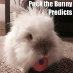Puck the Bunny Predicts: New York Rangers vs Montreal Canadiens
