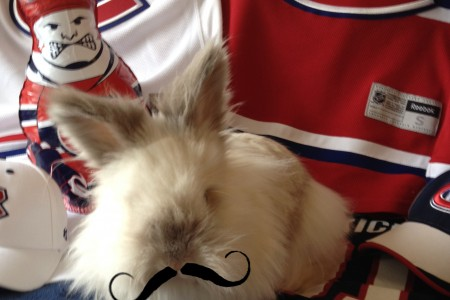 Puck the Bunny Predicts: Montreal Canadiens vs Buffalo Sabres